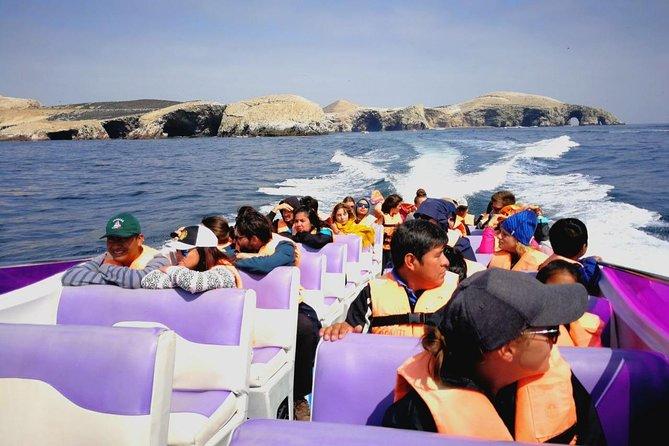 Paracas Fullday - Islas Ballestas y Nationalpark in Minibuggy