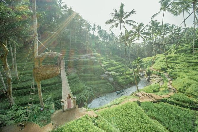 Ubud Tour & Jungle Swing Experience