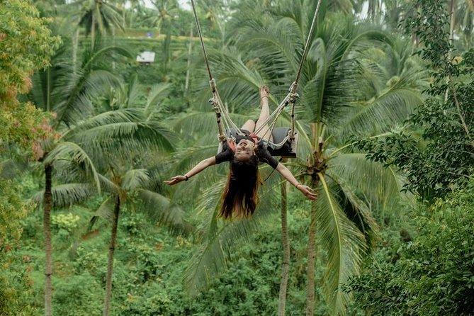 Ubud Tour & Jungle Swing Experience