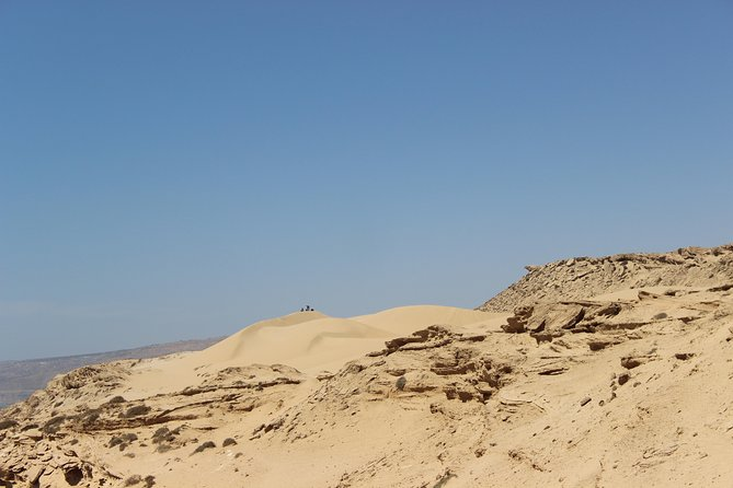 Sahara Tour : Half day trip to sahara (sand dunes ) with delicious lunch photo 8