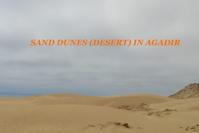 Sahara Tour : Half day trip to sahara (sand dunes ) with delicious lunch photo 9