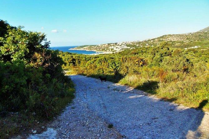 Douliana and Almyrida Nature Walk