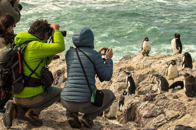 PUERTO MADRYN: Getaway for the day El Pedral, Pinguinos, picnic with lunch