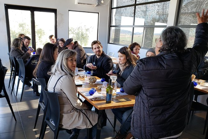 Visit to the olive grove and winepress with tasting