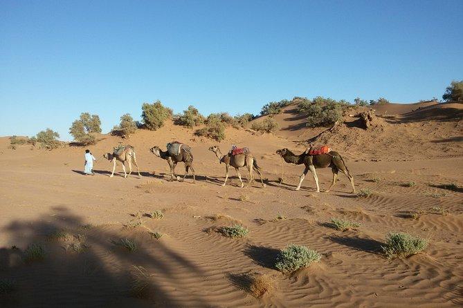 Marrakech – Erg Chegaga 4 days / 3 nights Desert Excursion & Camel Tour