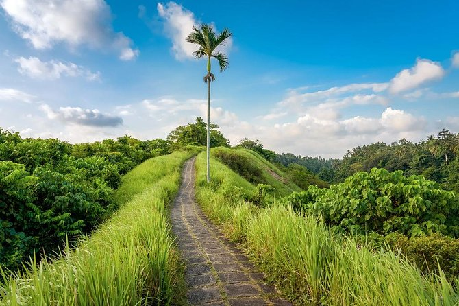 Full Day Tour: All Top Attractions in Ubud