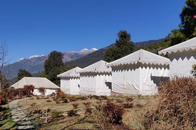 Camping in Bir Biling with Swiss tent stay