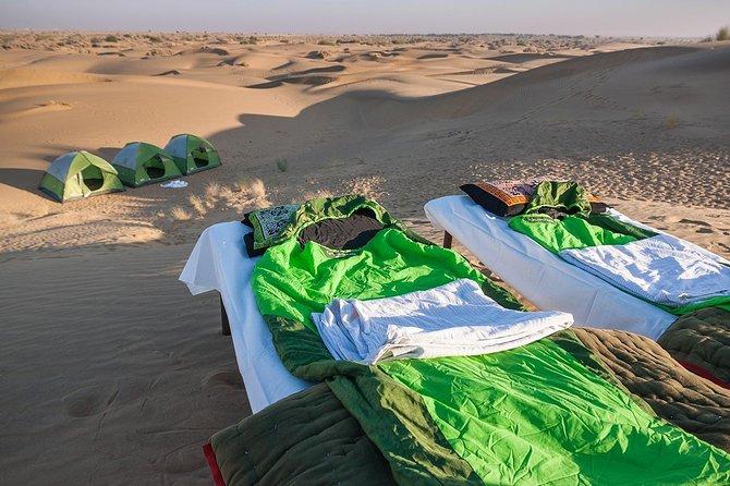 Conviértete en un nómada del desierto - Safari nocturno en camello en la naturaleza