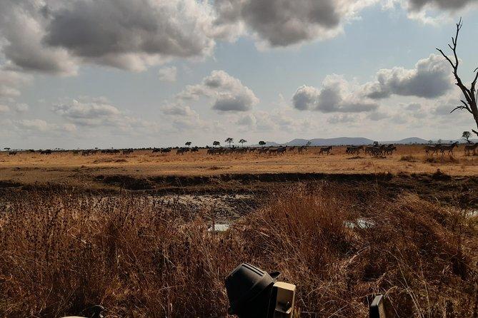 3 Days Mikumi National Park