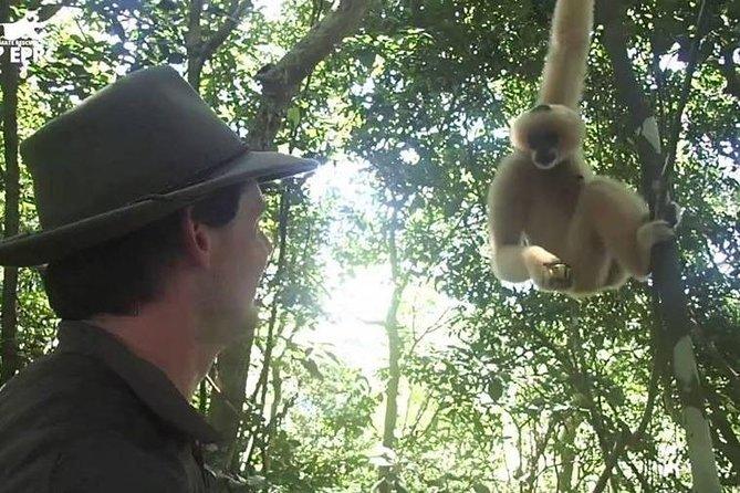 Cuc Phuong National Park tour 1 day