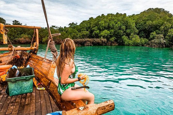Unforgettable ocean safari experience