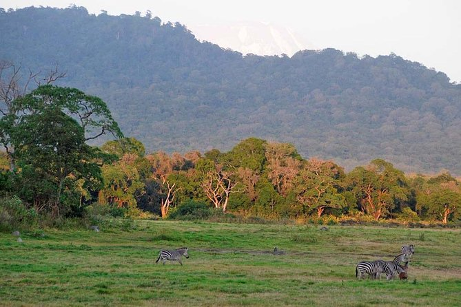 Arusha National Park trip