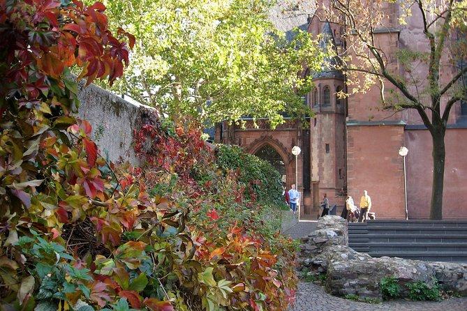 Romantic Road Ticket from Röttingen Wine Village to Frankfurt/Main (WED/SUN)