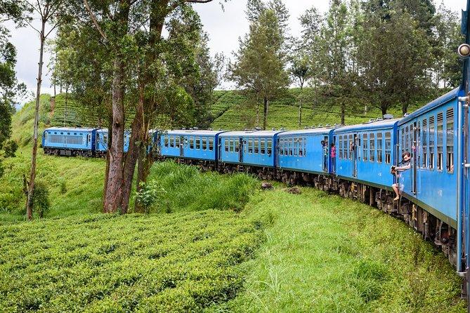 4 Days Tour to Kandy, Sigiriya & Nuwara Eliya