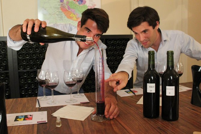 Bordeaux Small-Group Wine Tasting & Workshop with a Professional Sommelier