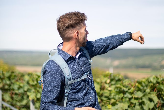 The Champagne Region Bike Tour from Paris