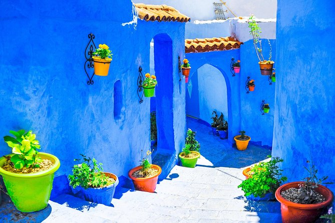5 Days Tour from Tangier to Marrakech via Chefchaouen Fes and Sahara desert photo 7