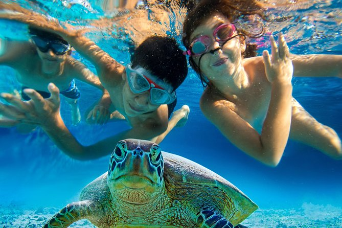All Inclusive Island Hopping and Snorkeling with Turtles