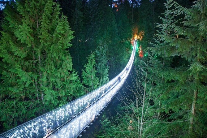 Vancouver City Sightseeing Tour: Capilano Suspension Bridge & Vancouver Lookout