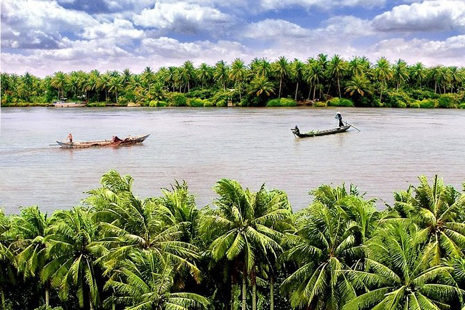 1 day tour from Can Tho to Ben Tre - King coconut trees - come back / to Sai Gon