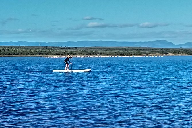 Stand Up Paddle Boarding Jeffreys Bay