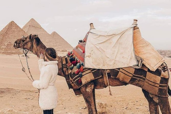 Camel Ride or Horse around the Pyramids
