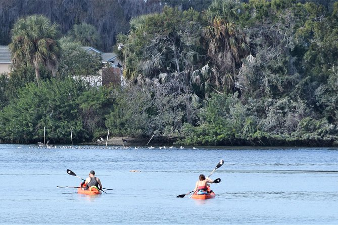 4 Hour Tandem Kayak Rental For Two People