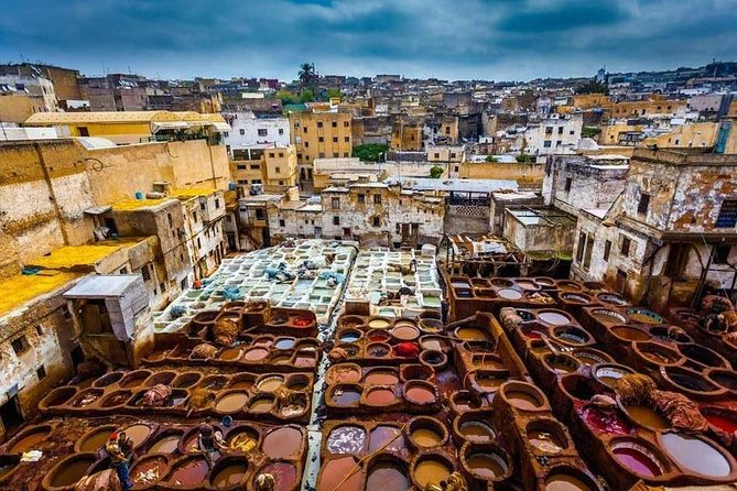 guided tour of fez medina