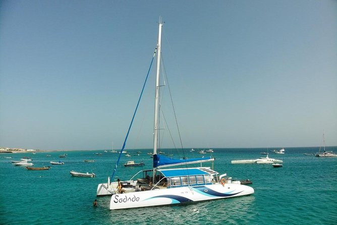 Lounge Catamaran SODADE Half-Day (Adults Only) photo 1