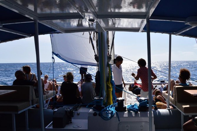 Lounge Catamaran SODADE Half-Day (Adults Only) photo 16
