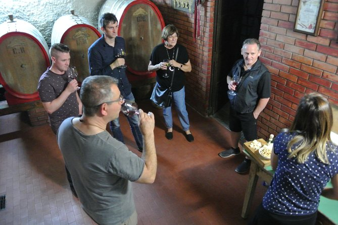 Wine and Olive oil tours photo 2