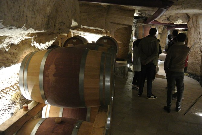 Wine and Olive oil tours photo 3