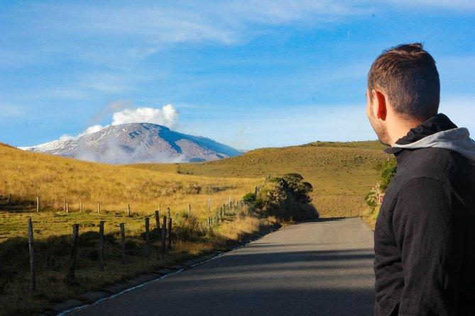 Nevado del Ruiz - Paramo Ecosystem & Hot Springs Adventure