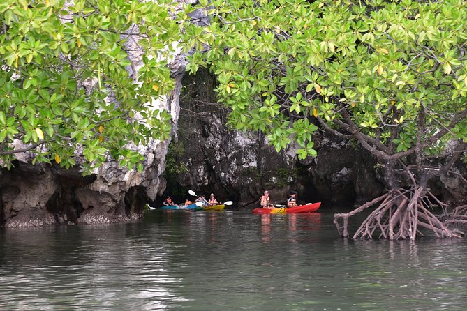 Small-Group Sea Kayaking in Ao Thalane Bay and Hong Island from Krabi