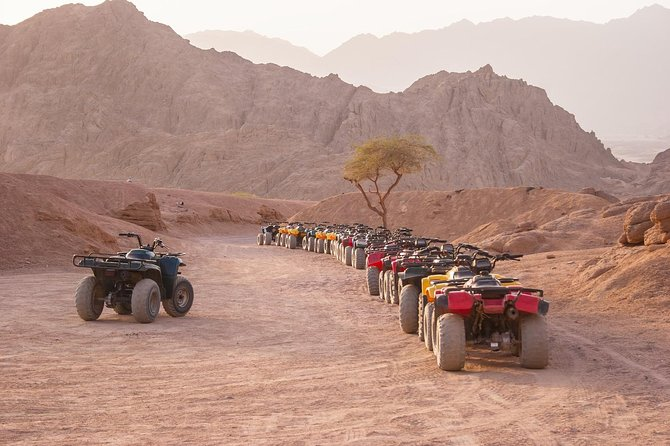 Quadbike Safari with dinner and camel riding In Sharm-el-Sheikh