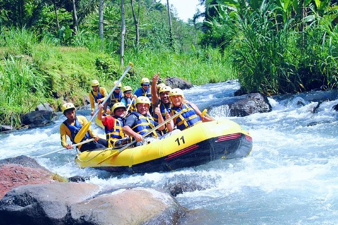 Ayung River Rafting with Kintamani Volcano Tour and Jungle Swing Ubud
