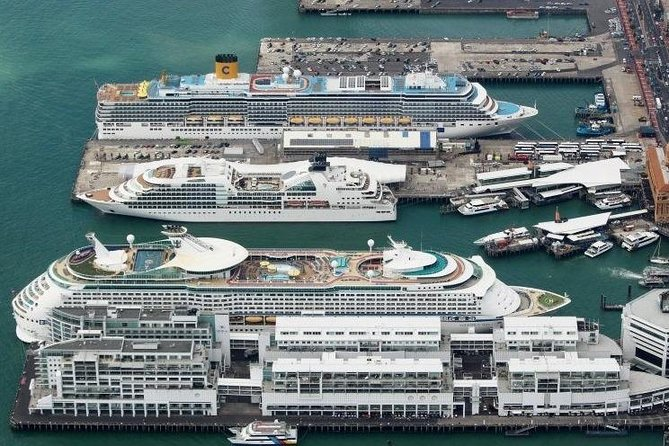 Private Auckland Cruise Ship to Auckland City Hotel photo 7