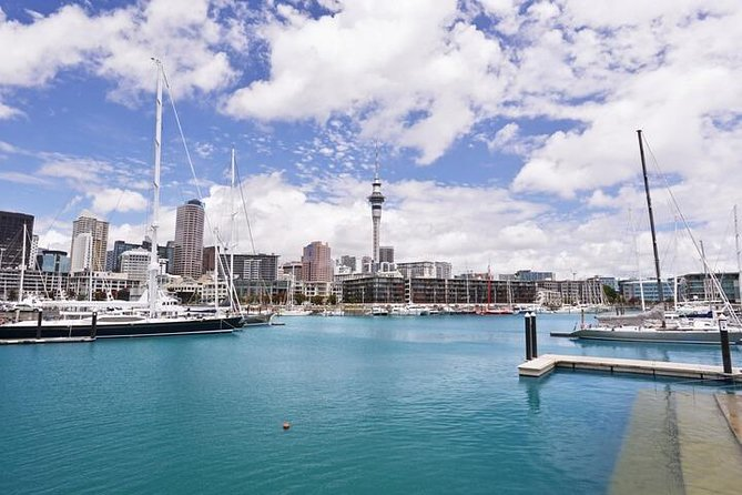 Private Auckland Cruise Ship to Auckland City Hotel photo 3