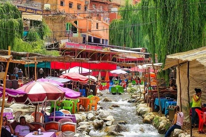 Ourika Valley & Atlas Mountain day trip Private from Marrakech