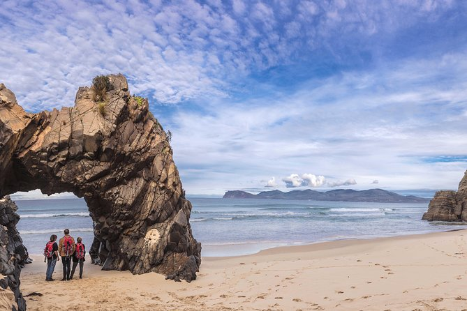 Bruny Island Small-Group Bushwalking Tour from Hobart Including Lunch