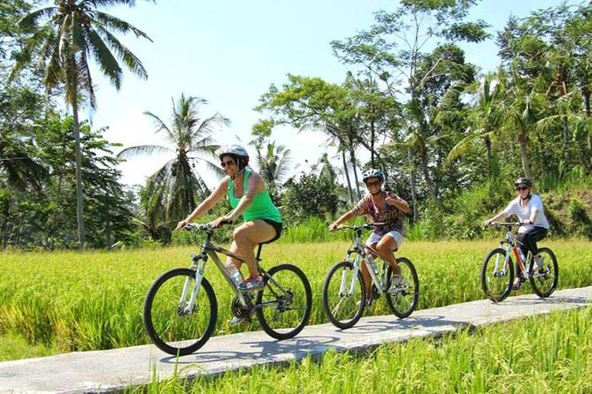 True Bali Experience - Kintamani Mountain cycling
