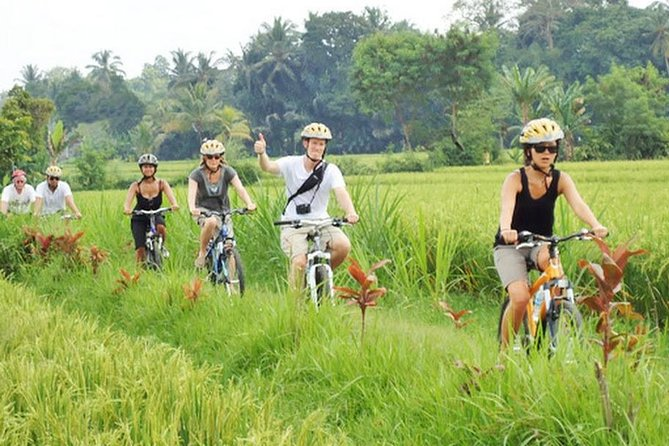 True Bali Experience - Jatiluwih Rice Paddy Cycling