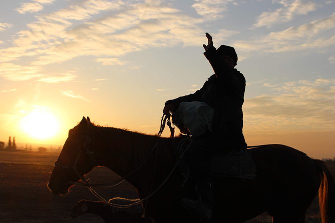 From the Saddle | 11 Day Horse Tour