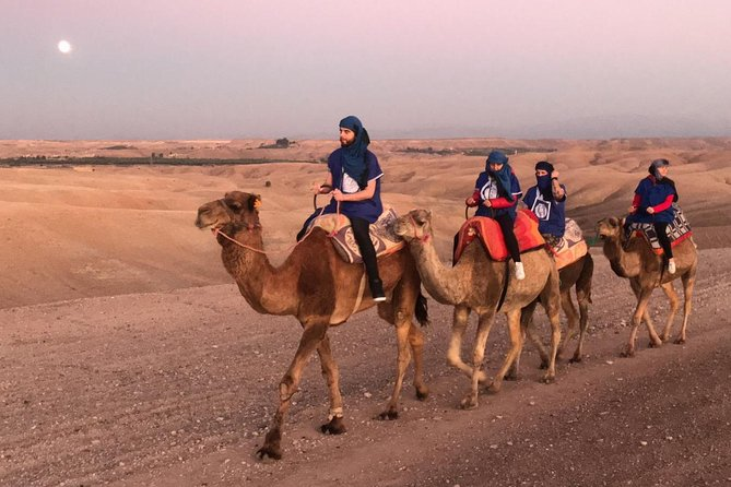 Quad bikes & Camel in Agafay Desert with lunch
