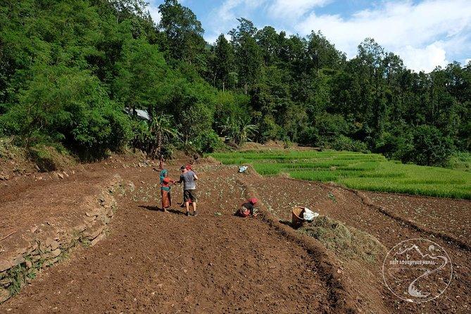 Village tourism - explore the local life