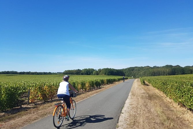 Loire Valley Self-Ride E-bike Tour from Amboise : Amboise & Vouvray vineyards