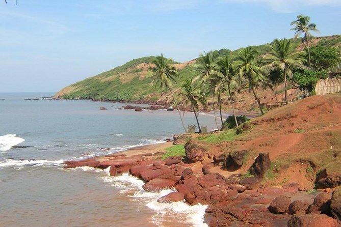Great Value North Goa Tour
