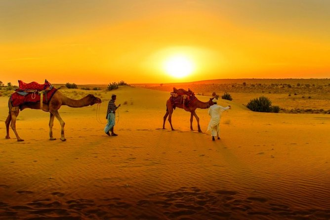 Day Trip to Desert Agafay & Atlas Mountains Villages & Camel Ride From Marrakech