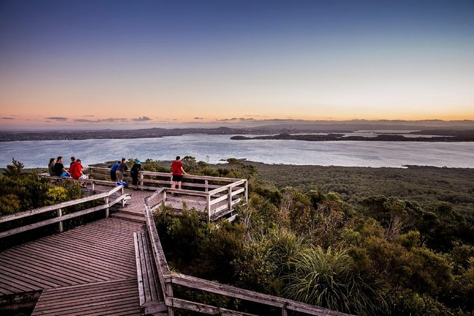 Rangitoto Island Full Day Guided Walk