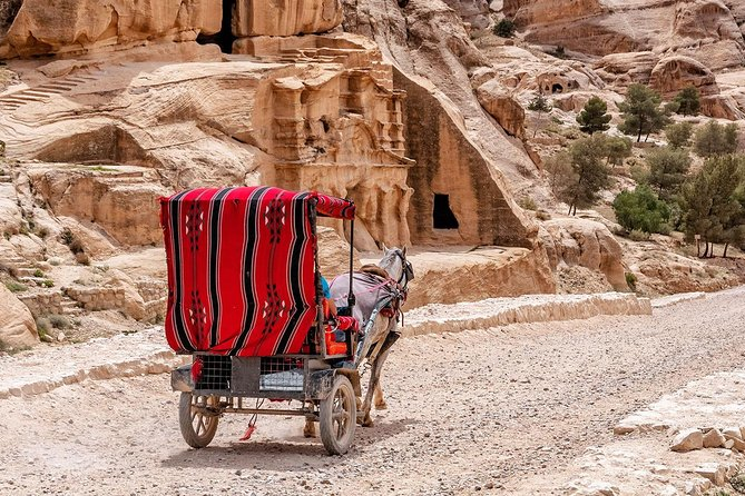 Tour To Petra From Amman Full-Day photo 10